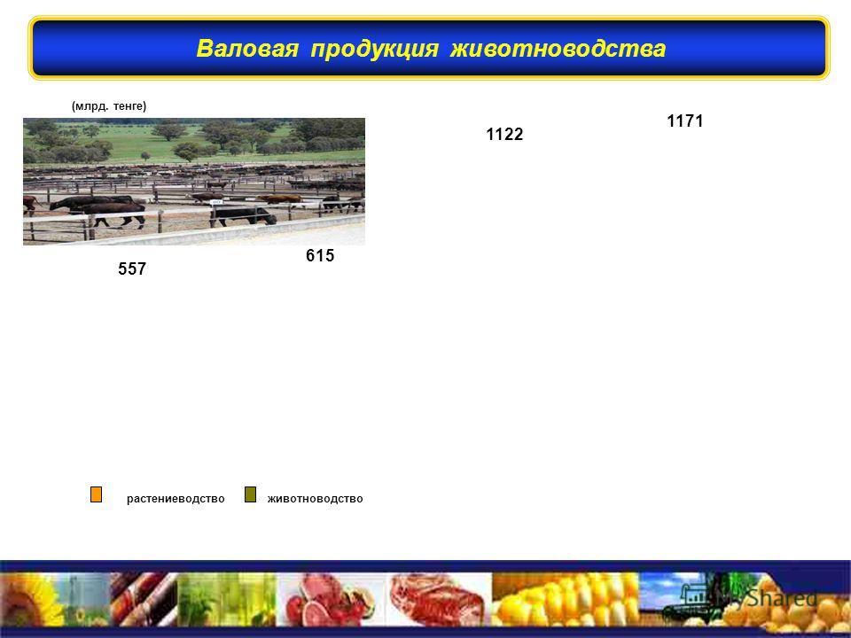 (млрд. тенге) 557 615 растениеводство животноводство 557 общий объем валовой продукции – 1122 1171 Валовая продукция животноводства