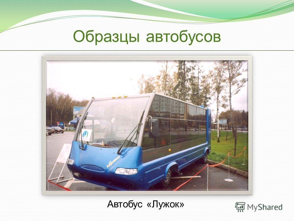 Образцы автобусов Автобус «Лужок»