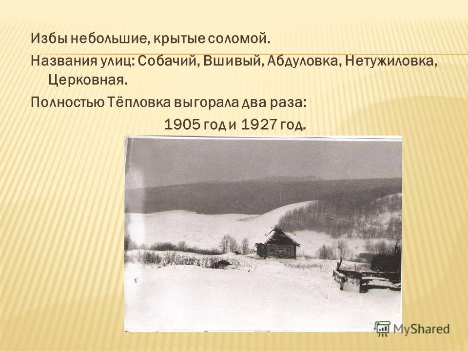 Избы небольшие, крытые соломой. Названия улиц: Собачий, Вшивый, Абдуловка, Нетужиловка, Церковная. Полностью Тёпловка выгорала два раза: 1905 год и 1927 год.