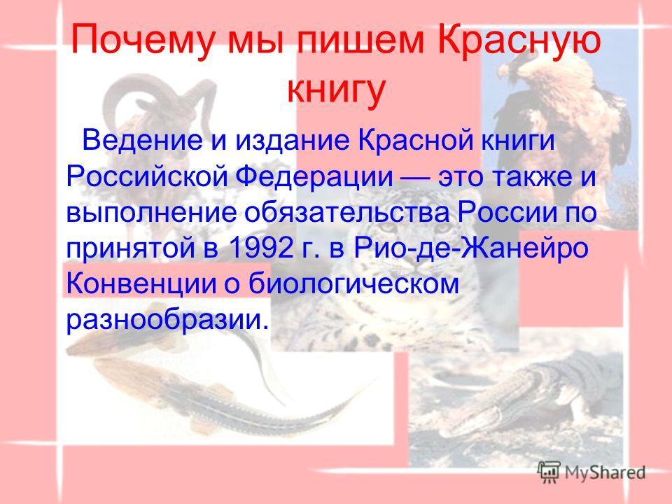 Растения в Красной книге России Презентация скачать