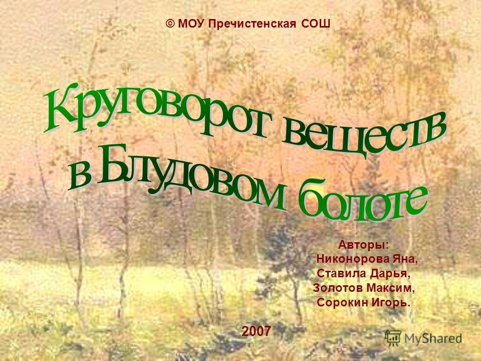 Авторы: Никонорова Яна, Ставила Дарья, Золотов Максим, Сорокин Игорь. 2007 © МОУ Пречистенская СОШ