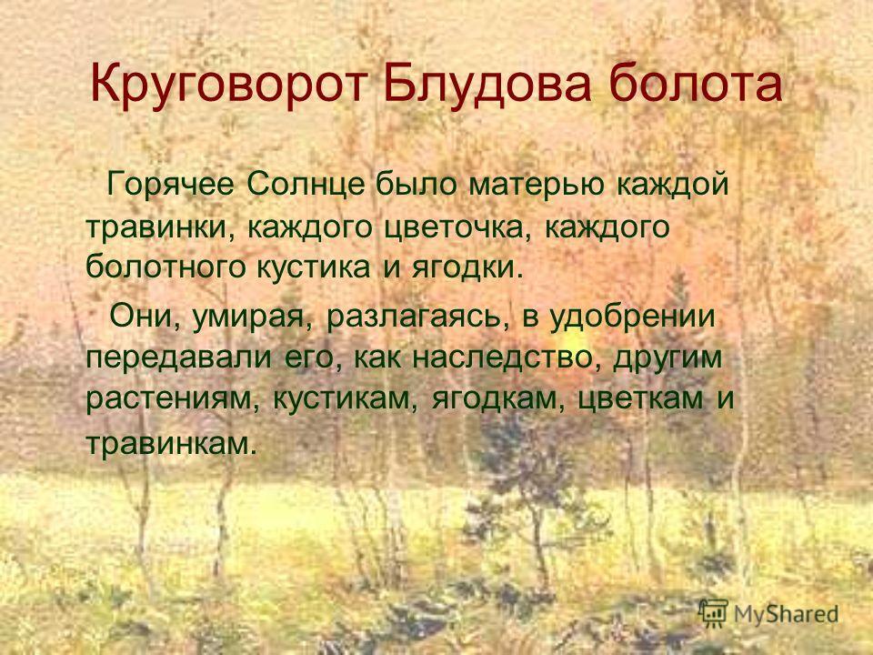 Круговорот Блудова болота Горячее Солнце было матерью каждой травинки, каждого цветочка, каждого болотного кустика и ягодки. Они, умирая, разлагаясь, в удобрении передавали его, как наследство, другим растениям, кустикам, ягодкам, цветкам и травинкам