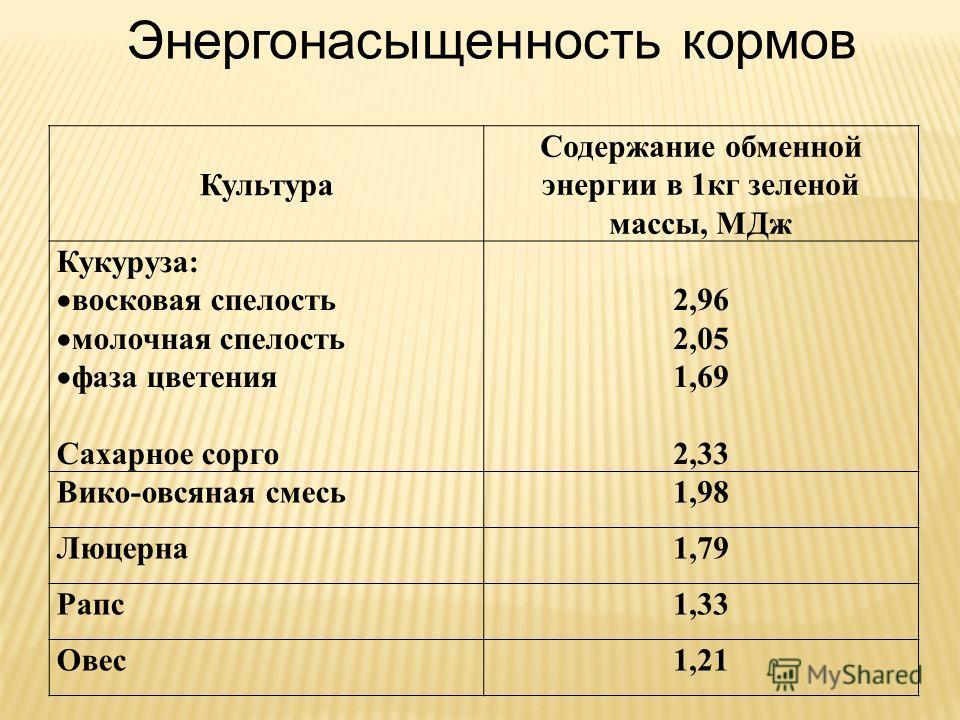 Культура Содержание обменной энергии в 1кг зеленой массы, МДж Кукуруза: восковая спелость молочная спелость фаза цветения Сахарное сорго 2,96 2,05 1,69 2,33 Вико-овсяная смесь1,98 Люцерна1,79 Рапс1,33 Овес1,21 Энергонасыщенность кормов