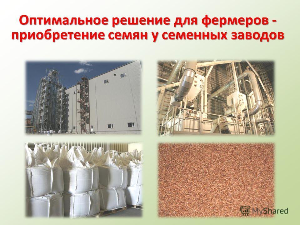 Оптимальное решение для фермеров - приобретение семян у семенных заводов
