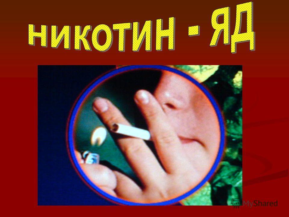 priklyuchencheskaya-erotika