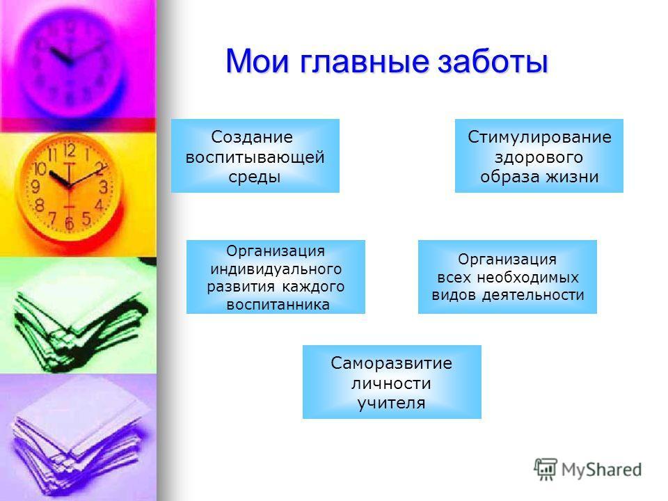 Мои главные заботы Создание воспитывающей среды Стимулирование здорового образа жизни Организация всех необходимых видов деятельности Организация индивидуального развития каждого воспитанника Саморазвитие личности учителя