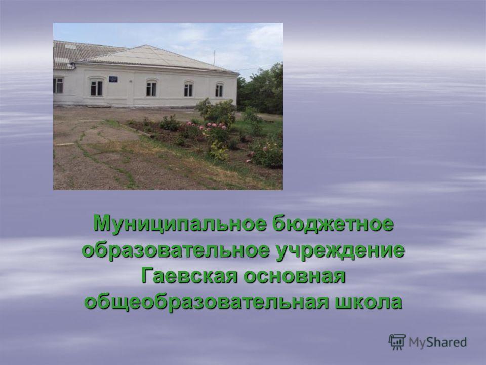 Муниципальное бюджетное образовательное учреждение Гаевская основная общеобразовательная школа