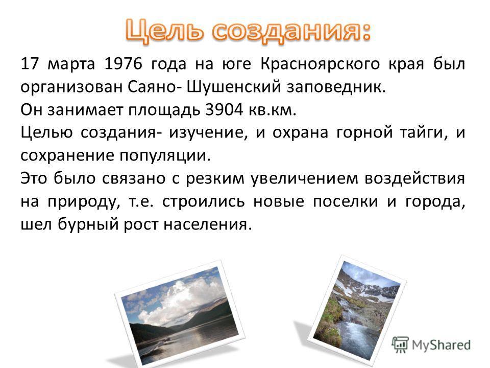 17 марта 1976 года на юге Красноярского края был организован Саяно- Шушенский заповедник. Он занимает площадь 3904 кв.км. Целью создания- изучение, и охрана горной тайги, и сохранение популяции. Это было связано с резким увеличением воздействия на пр
