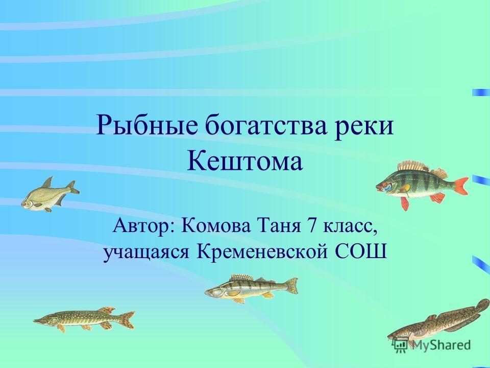 Рыбные богатства реки Кештома Автор: Комова Таня 7 класс, учащаяся Кременевской СОШ