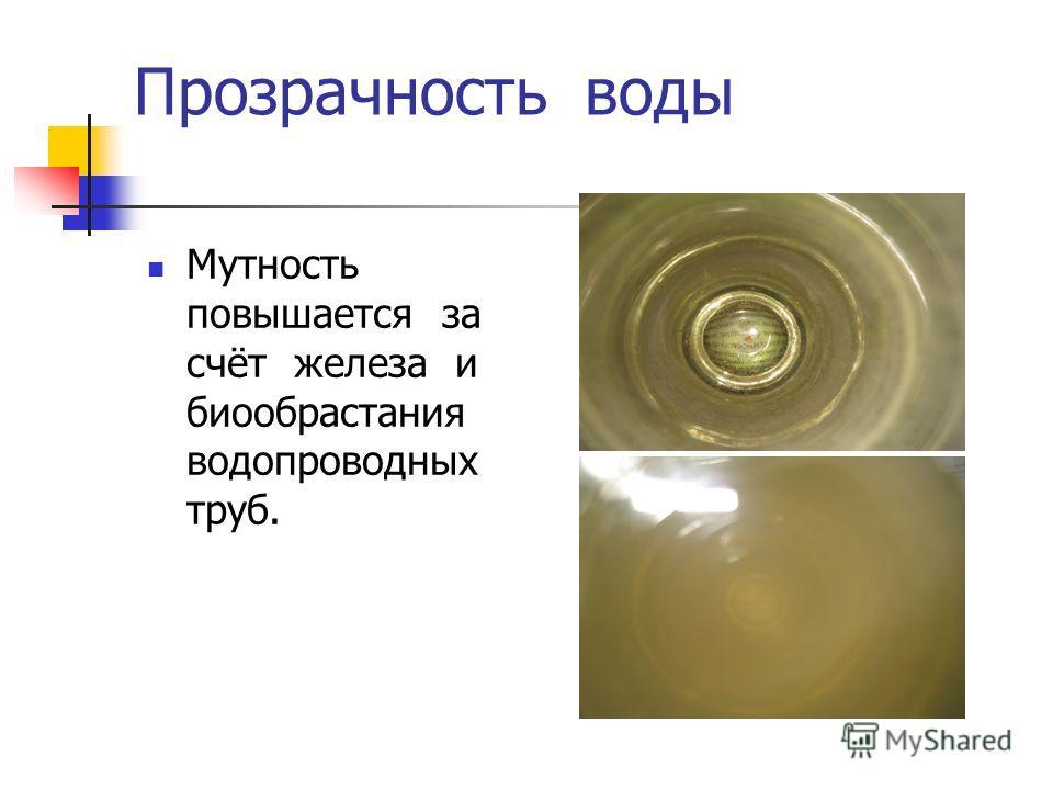 Прозрачность воды Мутность повышается за счёт железа и биообрастания водопроводных труб.