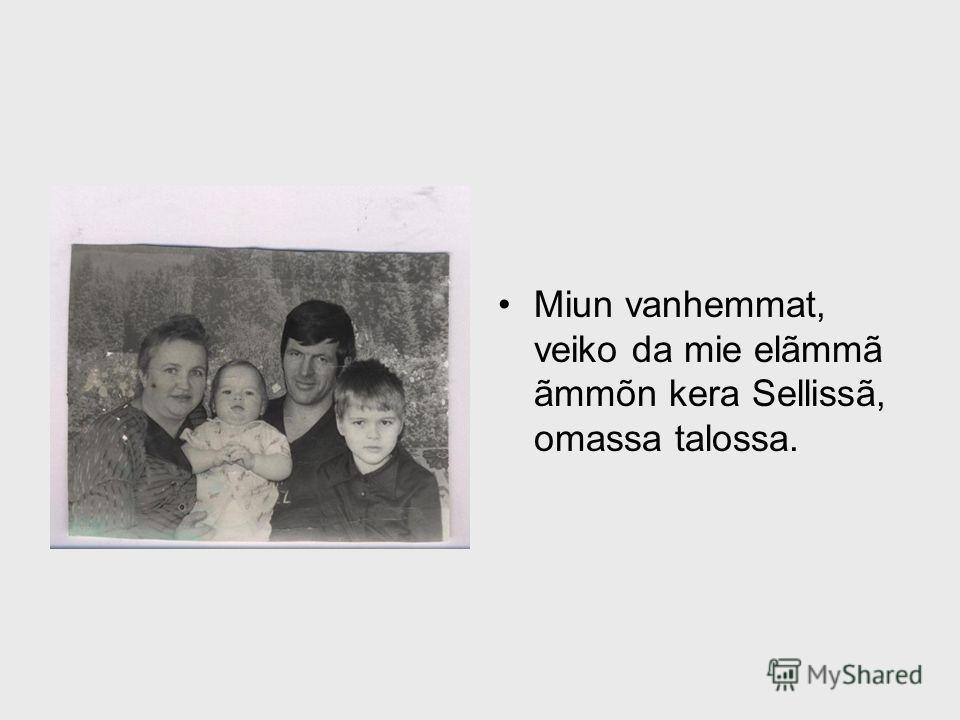 Miun vanhemmat, veiko da mie elãmmã ãmmõn kera Sellissã, omassa talossa.