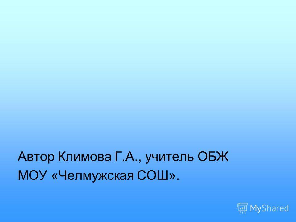 Автор Климова Г.А., учитель ОБЖ МОУ «Челмужская СОШ».