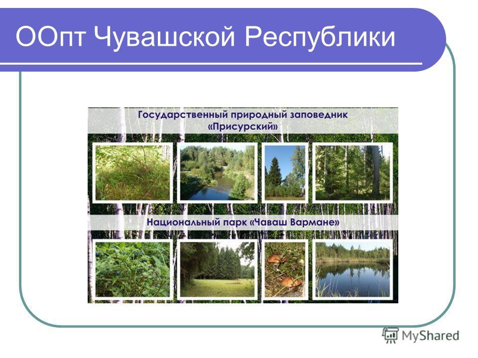 ООпт Чувашской Республики