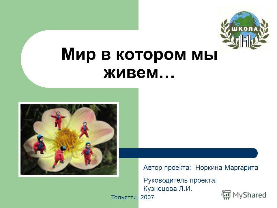 Мир в котором мы живем… Автор проекта: Норкина Маргарита Руководитель проекта: Кузнецова Л.И. Тольятти, 2007