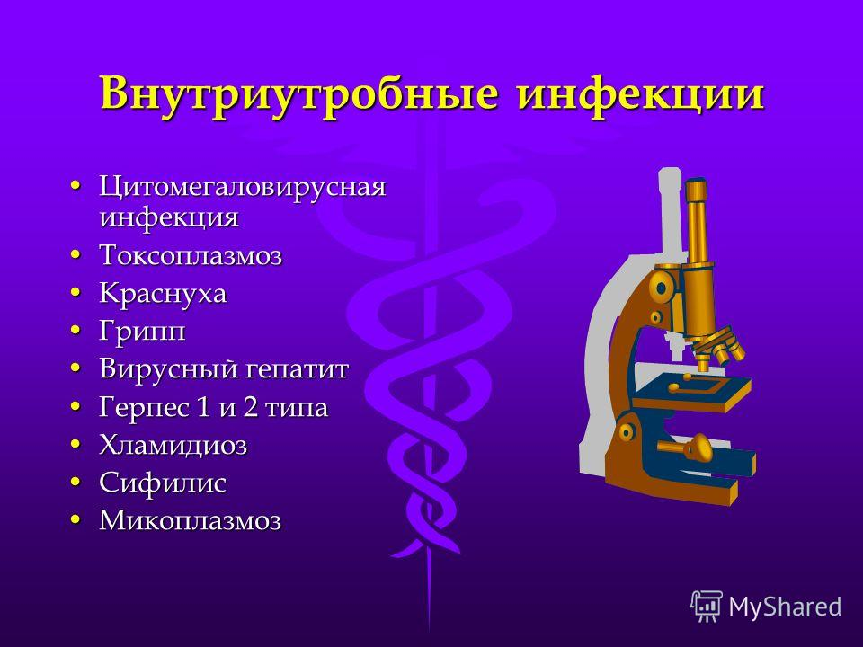 Внутриутробные инфекции Цитомегаловирусная инфекцияЦитомегаловирусная инфекция ТоксоплазмозТоксоплазмоз КраснухаКраснуха ГриппГрипп Вирусный гепатитВирусный гепатит Герпес 1 и 2 типаГерпес 1 и 2 типа ХламидиозХламидиоз СифилисСифилис МикоплазмозМикоп