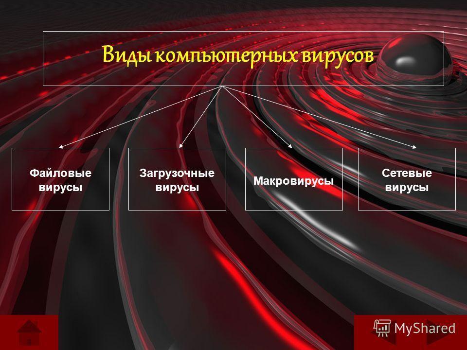 Виды компьютерных вирусов Файловые вирусы Загрузочные вирусы Макровирусы Сетевые вирусы