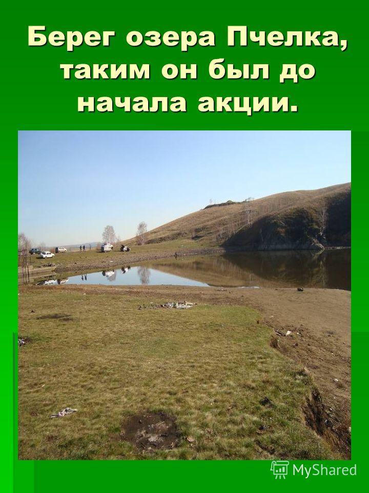 Берег озера Пчелка, таким он был до начала акции.