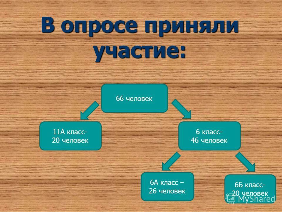 В опросе приняли участие: 6А класс – 26 человек 6Б класс- 20 человек 11А класс- 20 человек 6 класс- 46 человек 66 человек