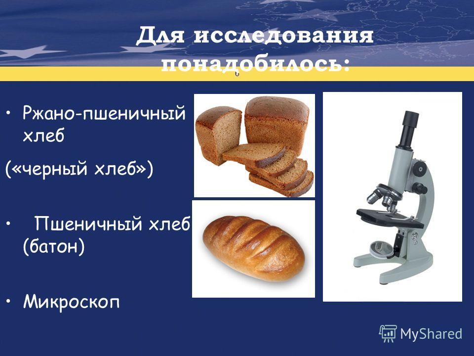 Проект финансируется Европейским Союзом 6 Для исследования понадобилось: Ржано-пшеничный хлеб («черный хлеб») Пшеничный хлеб (батон) Микроскоп