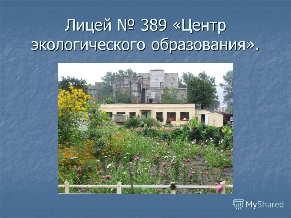 Лицей 389 «Центр экологического образования».