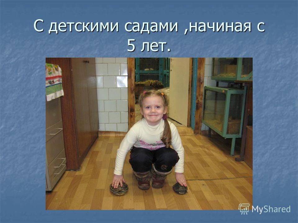 С детскими садами,начиная с 5 лет.
