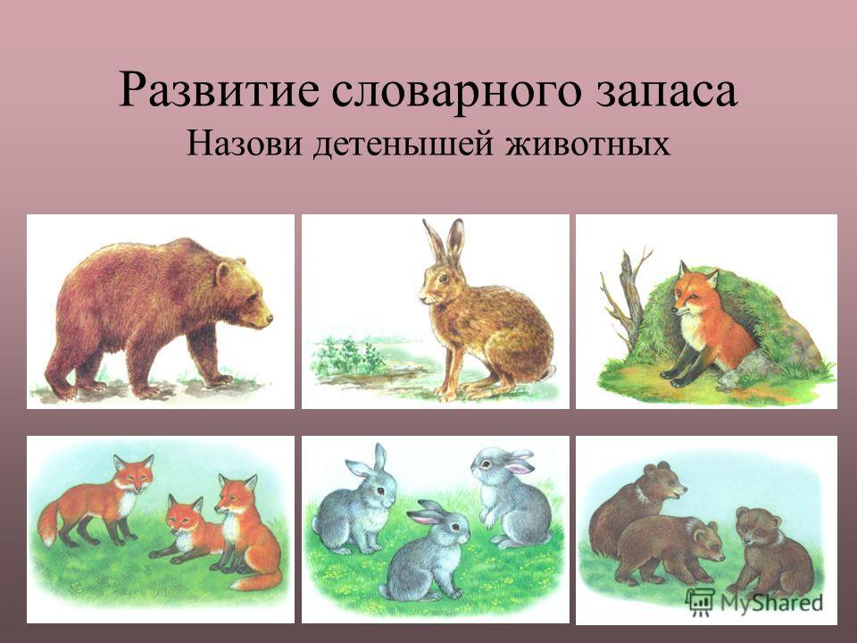 Развитие словарного запаса Назови детенышей животных