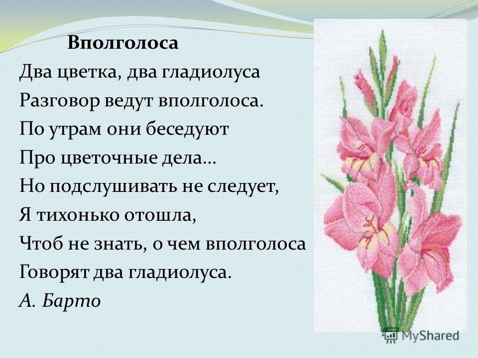 Вполголоса Два цветка, два гладиолуса Разговор ведут вполголоса. По утрам они беседуют Про цветочные дела… Но подслушивать не следует, Я тихонько отошла, Чтоб не знать, о чем вполголоса Говорят два гладиолуса. А. Барто