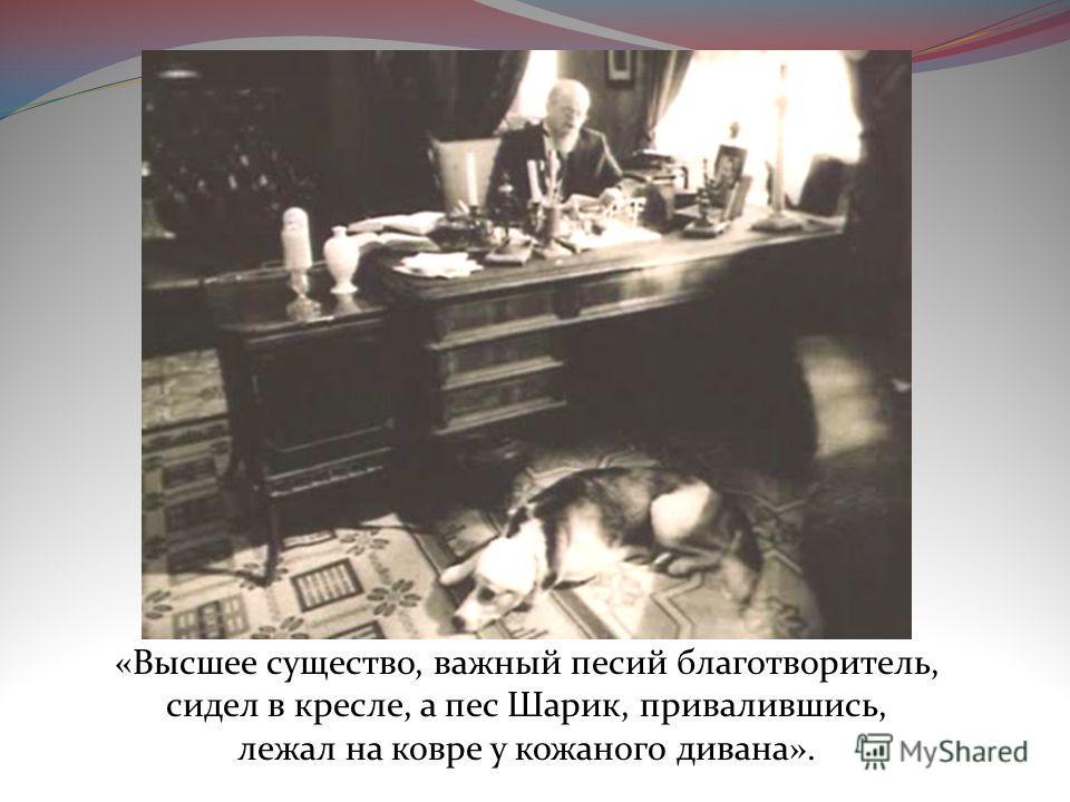 «Высшее существо, важный песий благотворитель, сидел в кресле, а пес Шарик, привалившись, лежал на ковре у кожаного дивана».