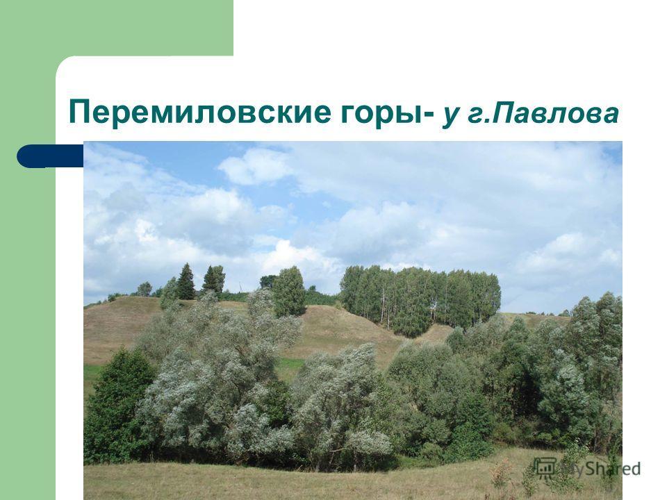 Перемиловские горы- у г.Павлова