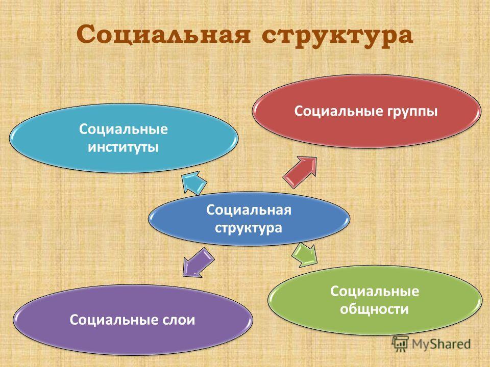 Социальная структура Социальные группы Социальные общности Социальные слои Социальные институты