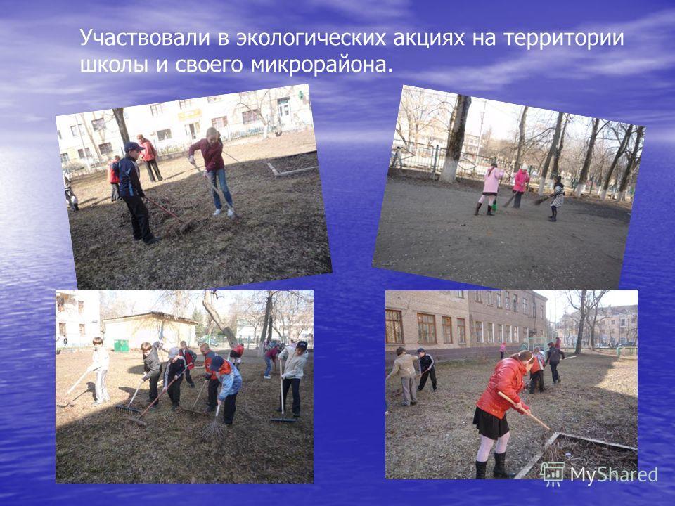 Участвовали в экологических акциях на территории школы и своего микрорайона.