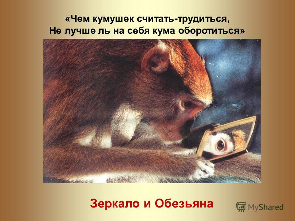 «Чем кумушек считать-трудиться, Не лучше ль на себя кума оборотиться» Зеркало и Обезьяна