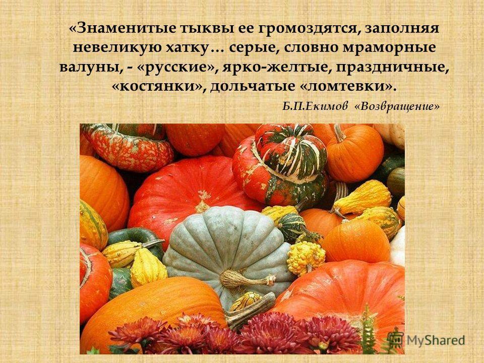 «Знаменитые тыквы ее громоздятся, заполняя невеликую хатку… серые, словно мраморные валуны, - «русские», ярко-желтые, праздничные, «костянки», дольчатые «ломтевки». Б.П.Екимов «Возвращение»