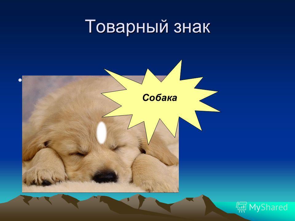 Рекламный проспект Вышивка « Собака» предназначена для украшения интерьера. Все, что окружает человека, за исключением творений самой природы, создано на протяжении тысячелетий руками человека. Наша планета похожа на гигантский фантастический музей В