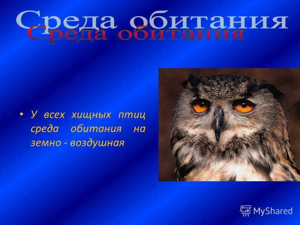 У всех хищных птиц среда обитания на земно - воздушная