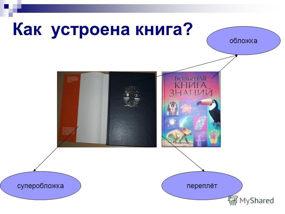 Как устроена книга? обложка суперобложкапереплёт