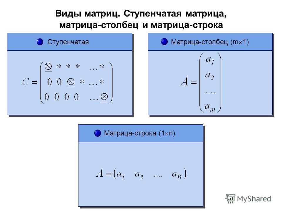 Виды матриц. Ступенчатая матрица, матрица-столбец и матрица-строка Ступенчатая Матрица-строка (1 n) Матрица-столбец (m 1)