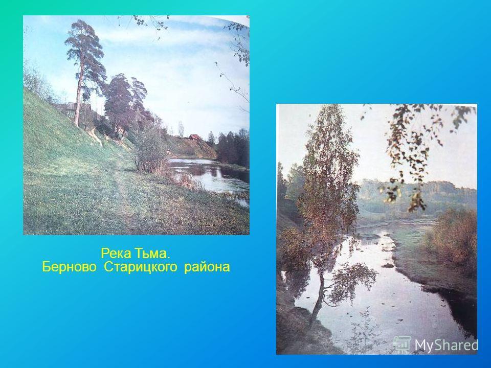 Река Тьма. Берново Старицкого района