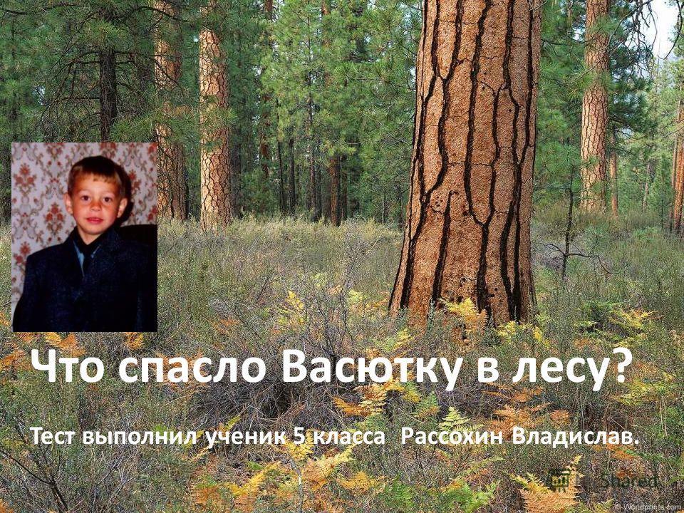 Что спасло Васютку в лесу? Тест выполнил ученик 5 класса Рассохин Владислав.