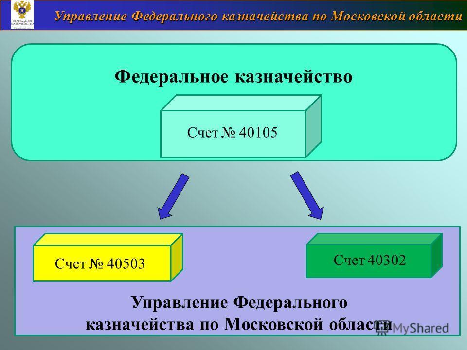 Федеральное казначейство Управление Федерального казначейства по Московской области Счет 40105 Счет 40503 Счет 40302 Управление Федерального казначейства по Московской области