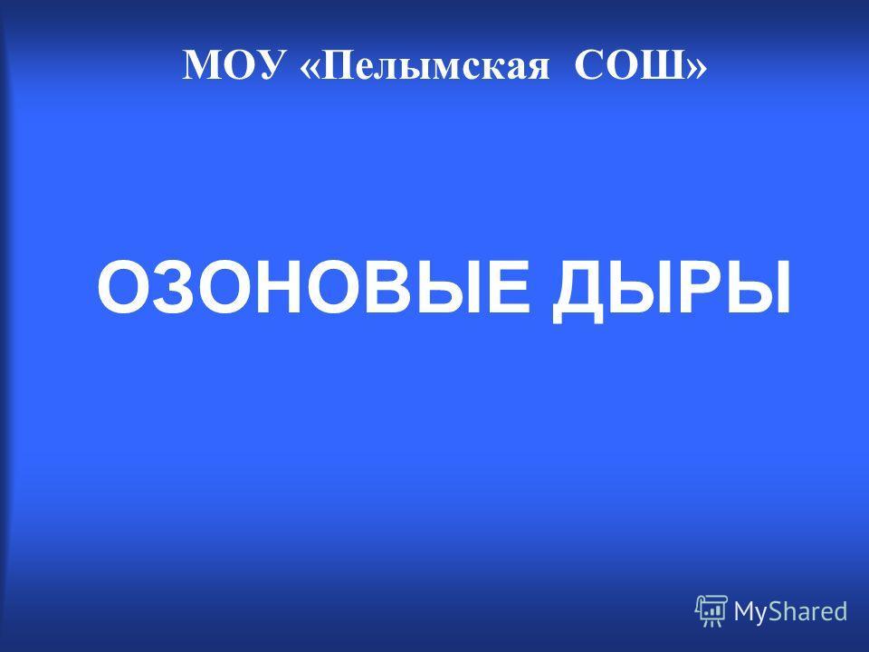 ОЗОНОВЫЕ ДЫРЫ МОУ «Пелымская СОШ»