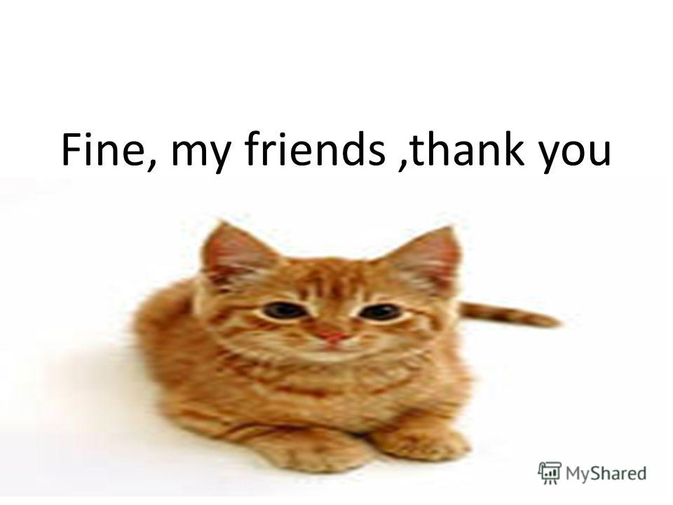 Fine, my friends,thank you