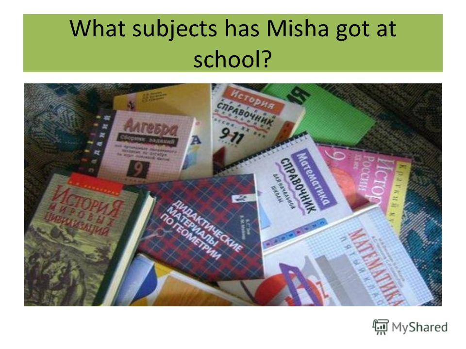 What subjects has Misha got at school?