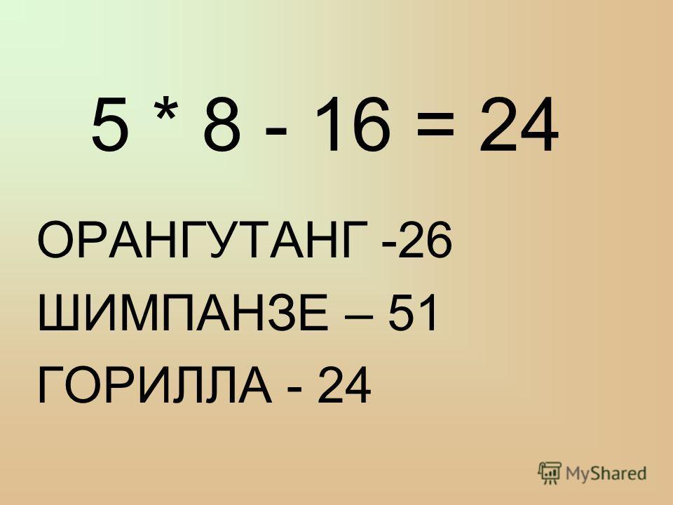 5 * 8 - 16 = 24 ОРАНГУТАНГ -26 ШИМПАНЗЕ – 51 ГОРИЛЛА - 24