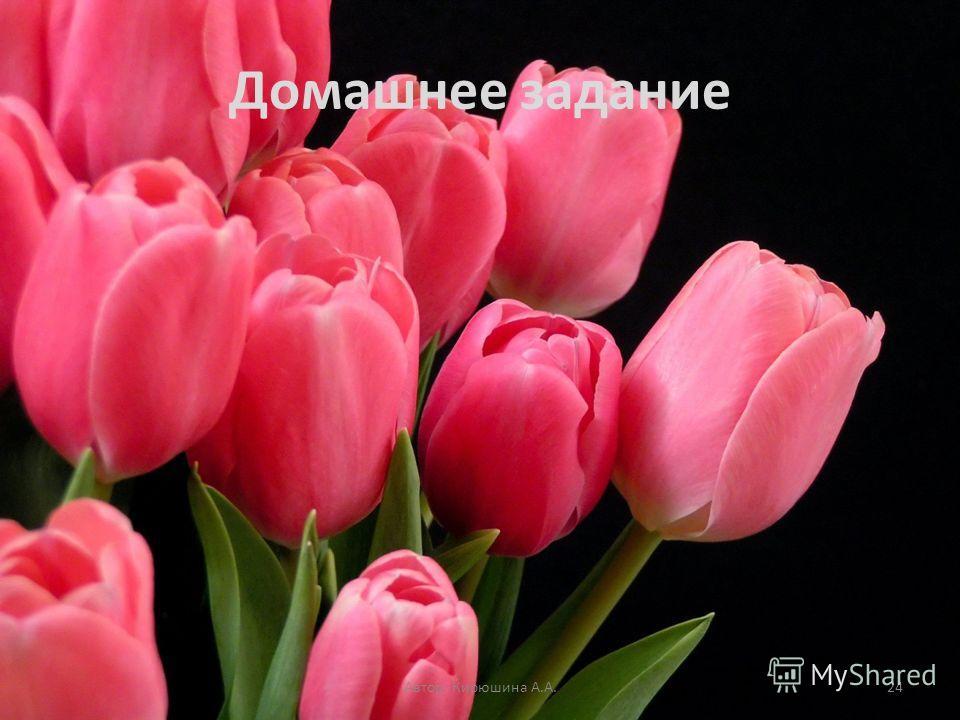 Домашнее задание Автор: Кирюшина А.А.24