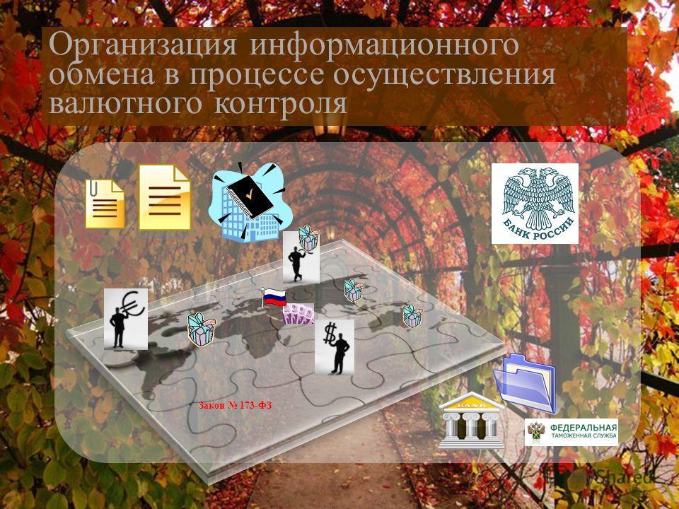 Закон 173-ФЗ Организация информационного обмена в процессе осуществления валютного контроля