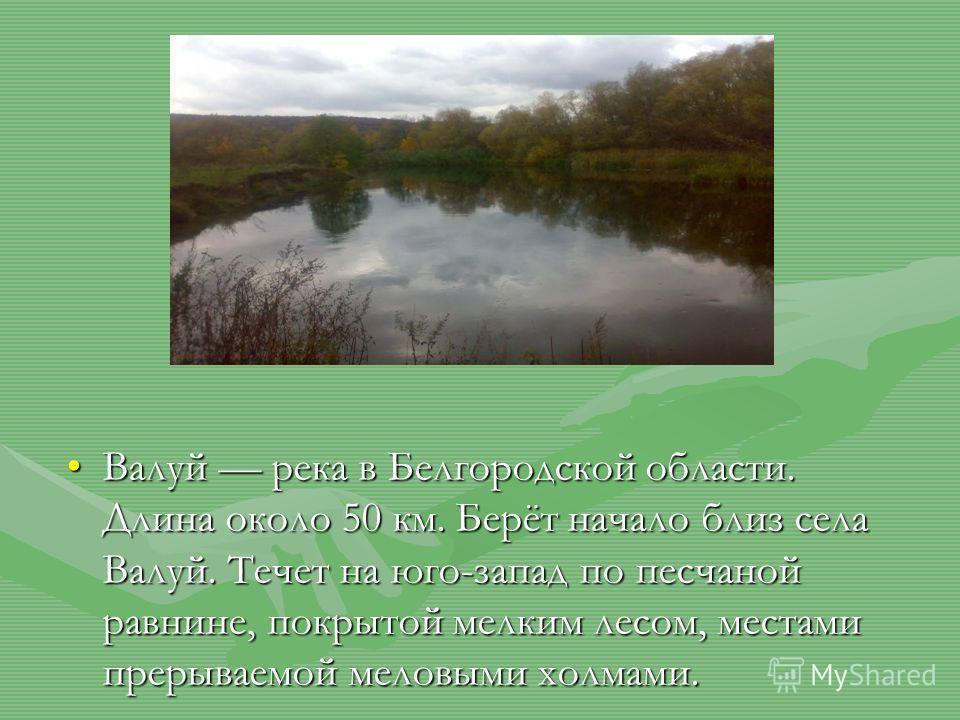 Валуй река в Белгородской области. Длина около 50 км. Берёт начало близ села Валуй. Течет на юго-запад по песчаной равнине, покрытой мелким лесом, местами прерываемой меловыми холмами.Валуй река в Белгородской области. Длина около 50 км. Берёт начало