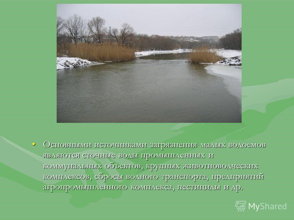 Основными источниками загрязнения малых водоемов являются сточные воды промышленных и коммунальных объектов, крупных животноводческих комплексов, сбросы водного транспорта, предприятий агропромышленного комплекса, пестициды и др.Основными источниками