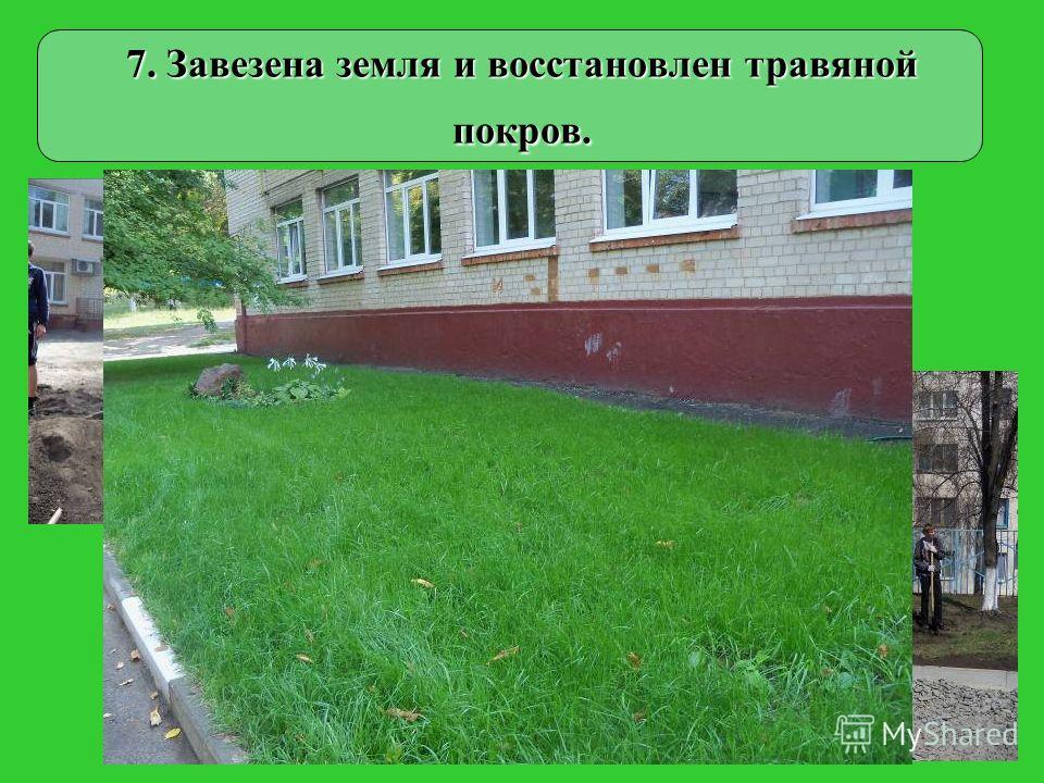 7. Завезена земля и восстановлен травяной покров.