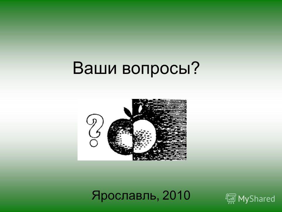 Ваши вопросы? Ярославль, 2010